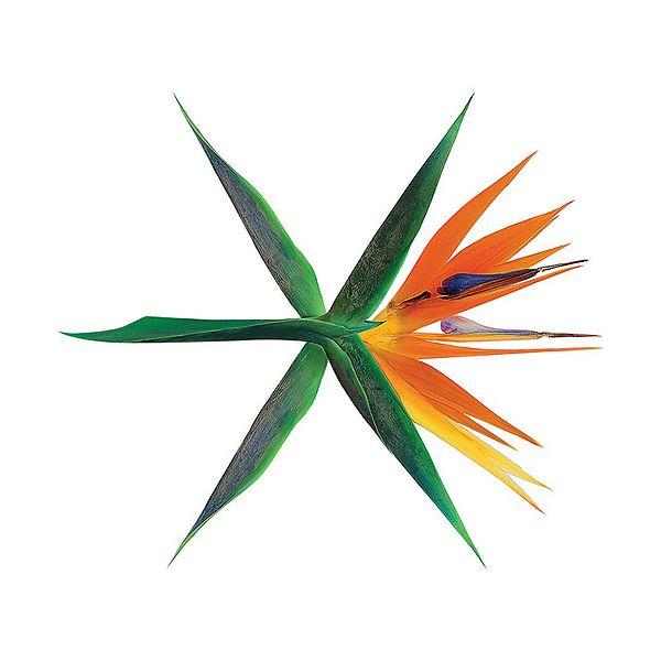 купить кпоп альбом EXO - The War описание распаковка треки фото