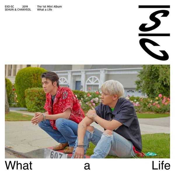 купить кпоп альбом EXO-sc What a Life описание треки распаковка фото