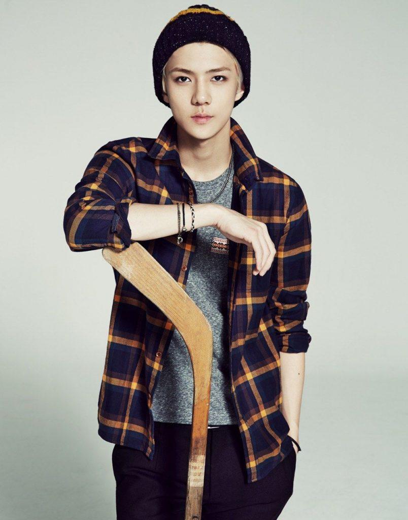 сехун exo кпоп фото 2014