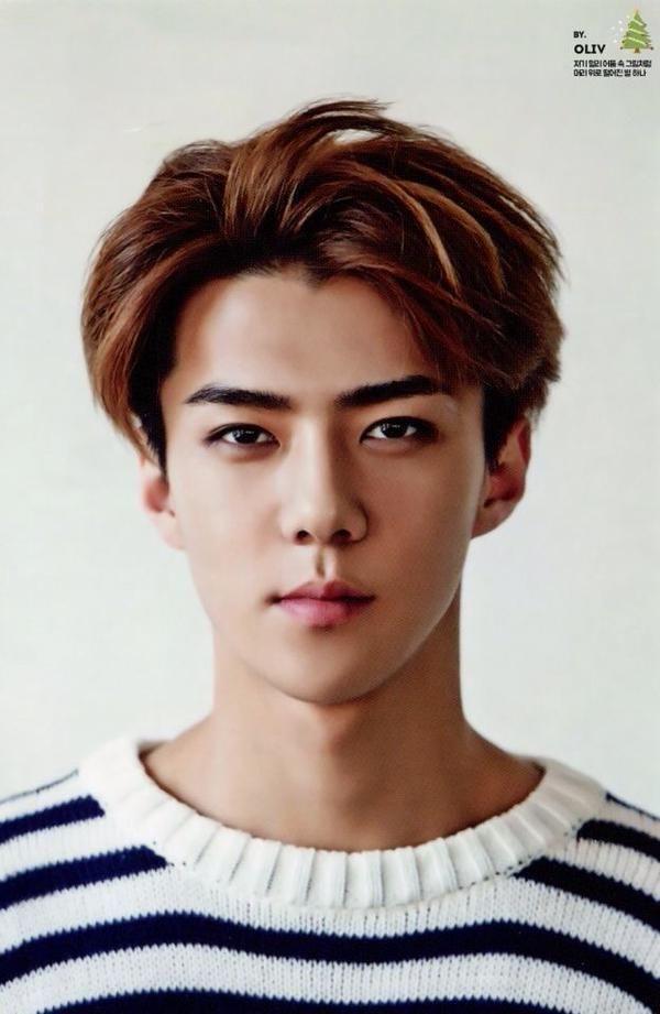 сехун exo кпоп фото 2015