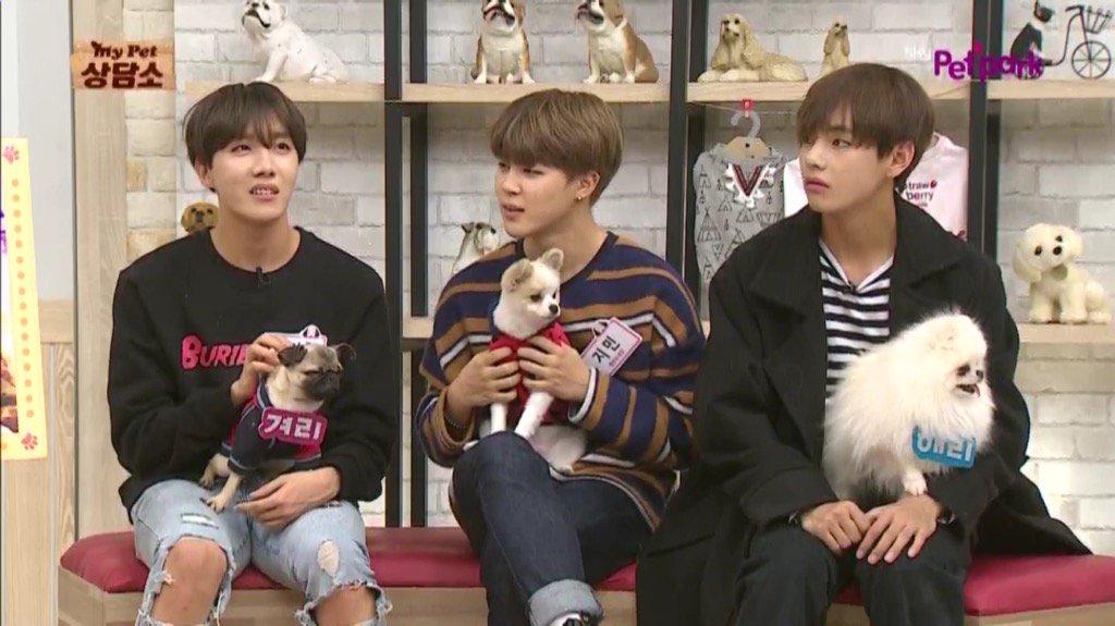 photo korean show My Pet Clinic  bts jhope jimin taehyung
