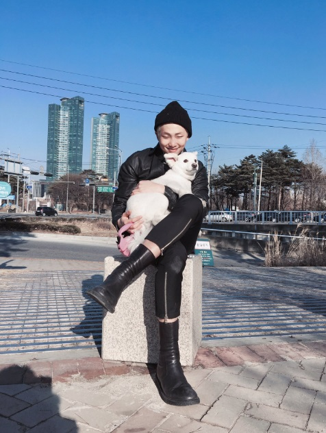 show Close-up Observation Diary on Idol Find Me korea kpop bts namjoon rm